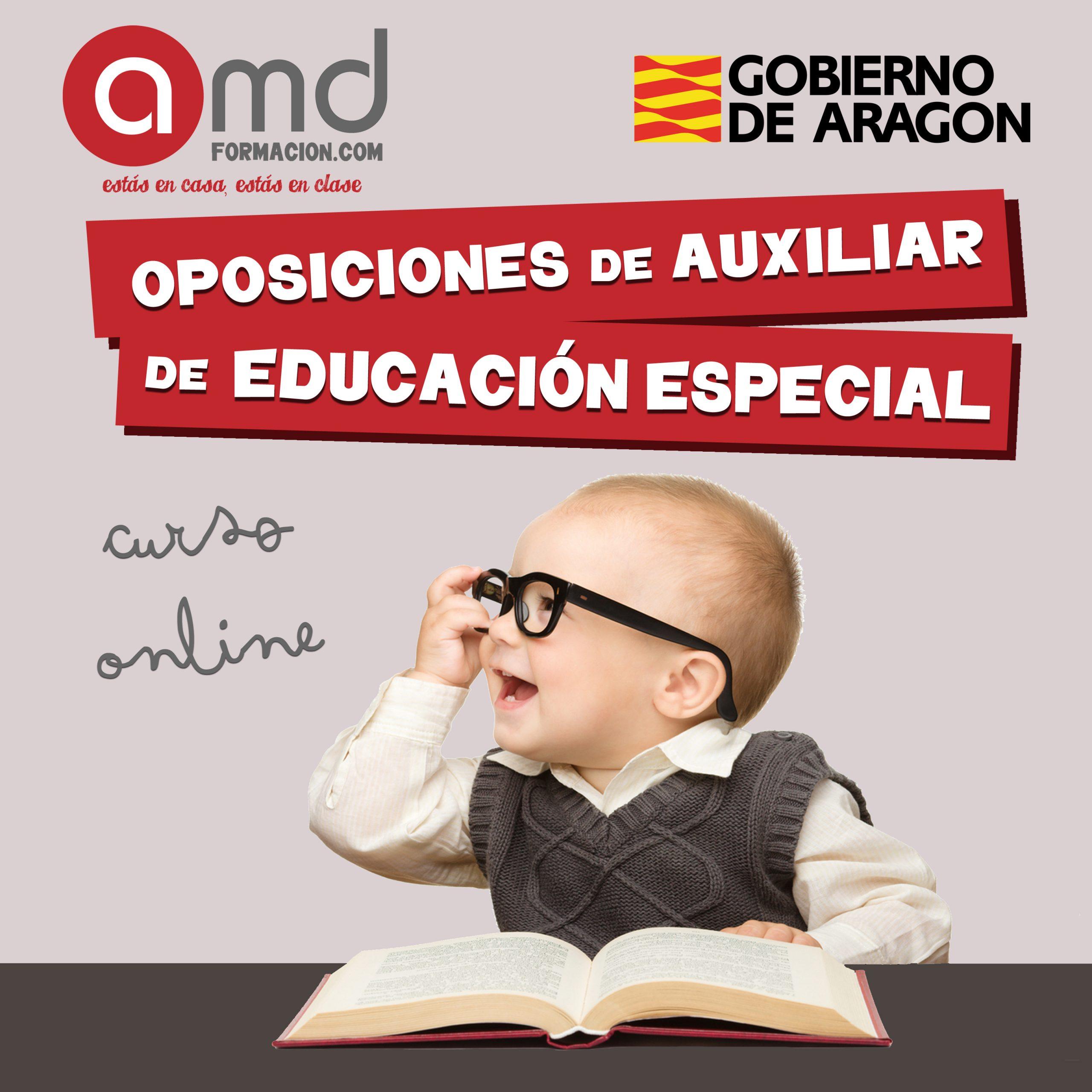 Auxiliar de Educación Especial Aragón