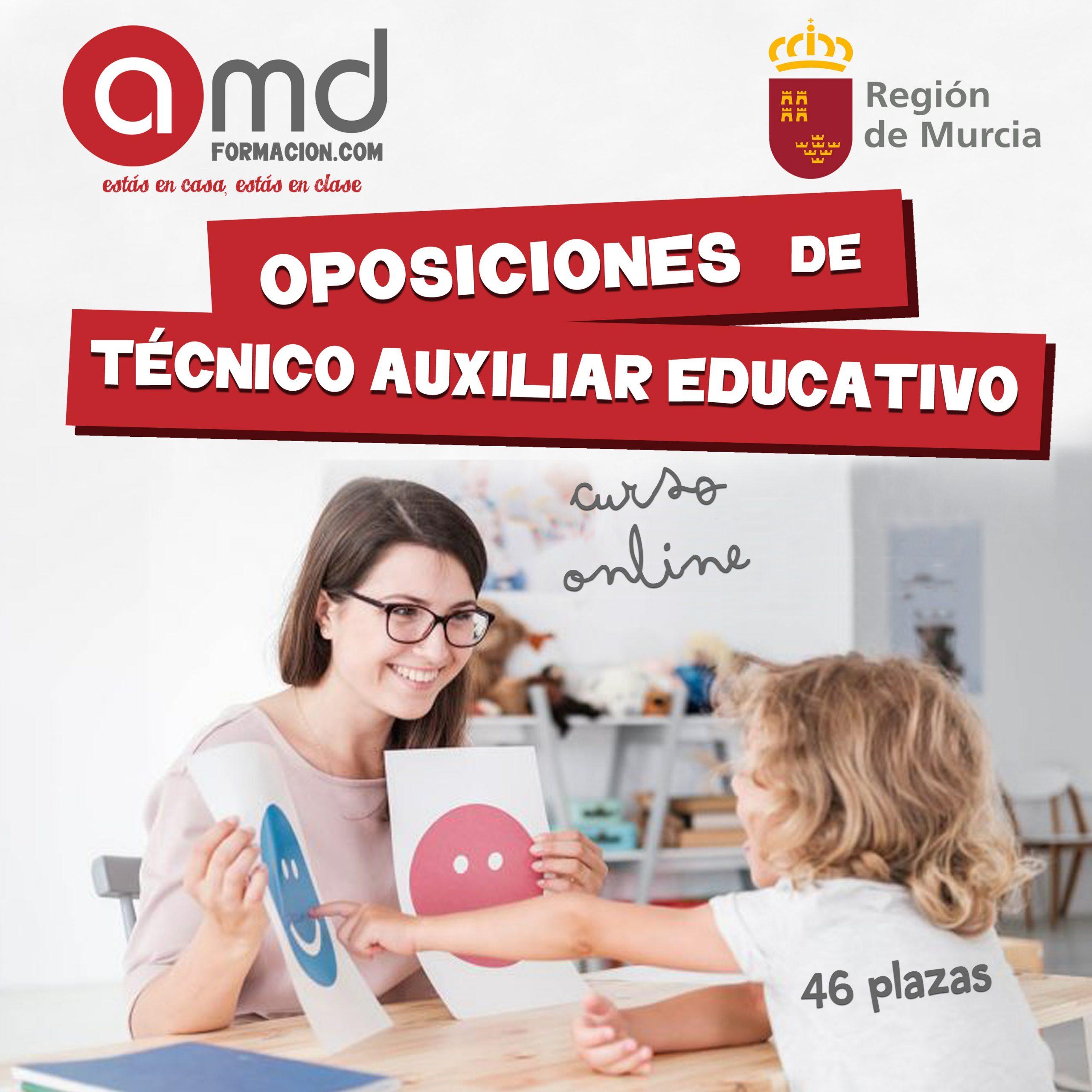 Técnico Auxiliar Educativo Murcia